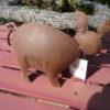 2 Verschillende metalen bruine varkens-453